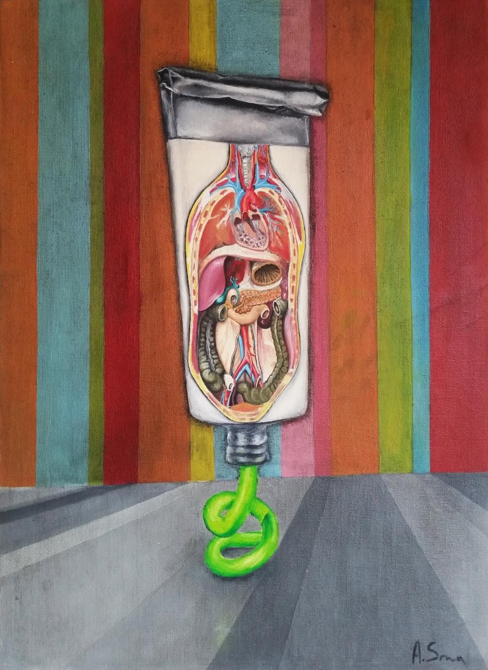 Anatomična tuba/Anatomical Tube